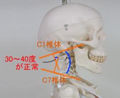 ストレートネック説明画像 洲本接骨院ストレートネックページ用資料